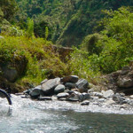 Inca Jungle Trek 3 Days / 2 Nights